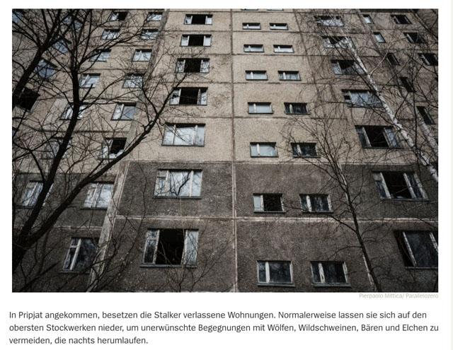 Die Stalker von Tschernobyl 2
