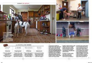 greyhounds_Storia11-3 1