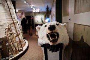 CHURCHILL, THE WORLD CAPITAL OF POLAR BEARS 1