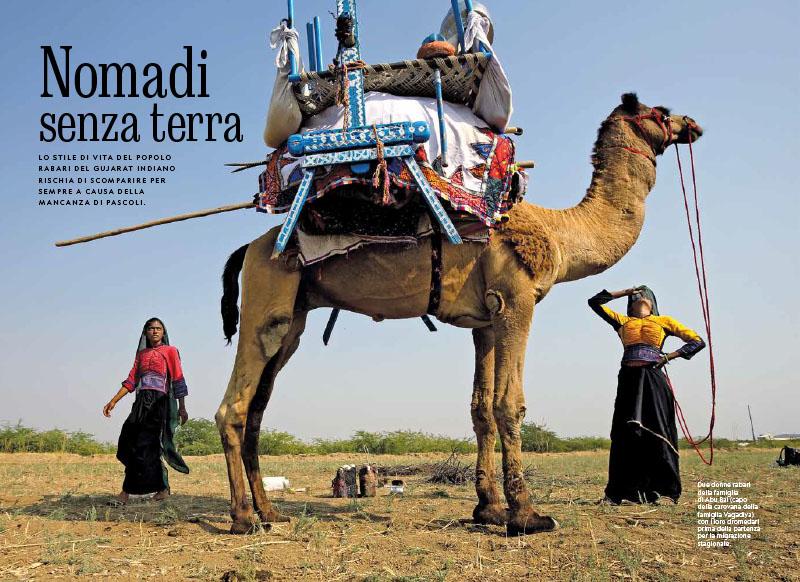 Gujarat Indiano | Rabari. Nomadi senza terra 1