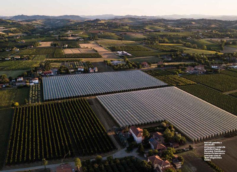 Cambio campo | Viaggio nell'agricoltura italiana stravolta dal clima 3