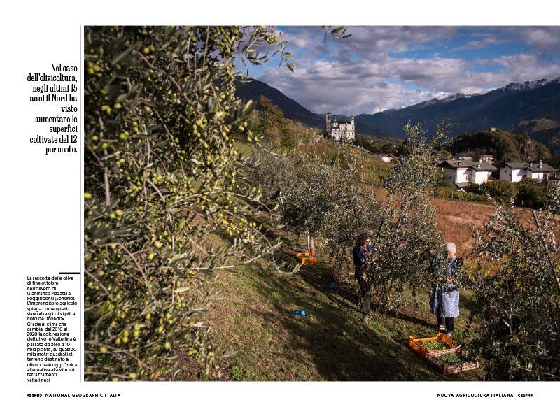 Cambio campo | Viaggio nell'agricoltura italiana stravolta dal clima 8