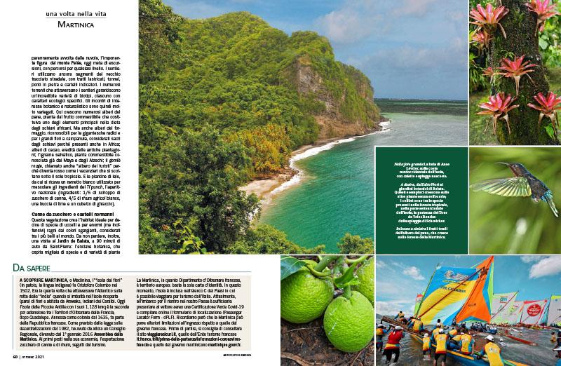 Martinica | Il giardino dei Caraibi 3